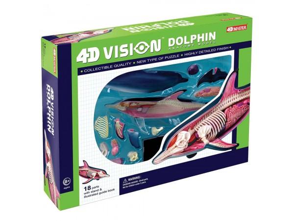 4D Anatomisch Model Dolfijn