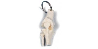 Sleutelhanger Knie