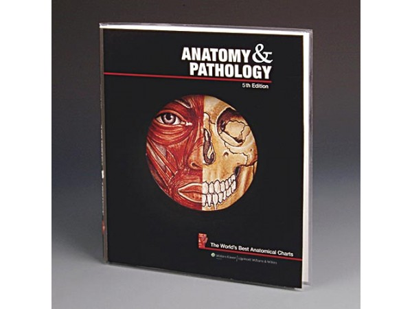 PLATENBOEK Anatomy and Pathology
