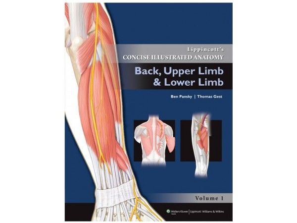 BACK, UPPER LIMB AND LOWER LIMB, Lippincott