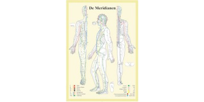 Meridianen Poster A2 Nederlands