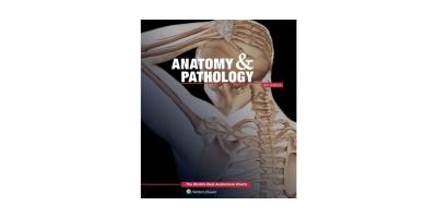 PLATENBOEK Anatomy and Pathology
