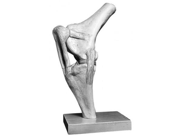 Kniegewricht Model Paard