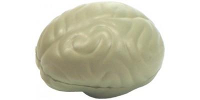 Anti-stress Hersenen