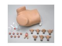 Gynaecologie Simulator