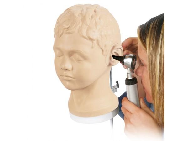 Diagnostische en procedurele ooronderzoek model, 3BW44747-1017258